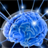Brain switch that turns off consciousness discovered